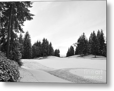 Winter Golf Course  2 Metal Print by Tanya  Searcy