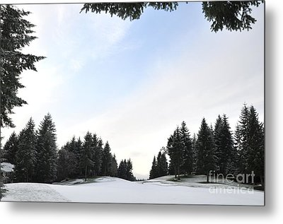 Winter Golf Course  4 Metal Print by Tanya  Searcy