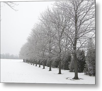 Metal Print featuring the mixed media Winter Hoar Frost On Trees by Bruce Ritchie
