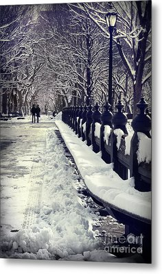 Winter In The Central Park New York 2 Metal Print by Design Remix