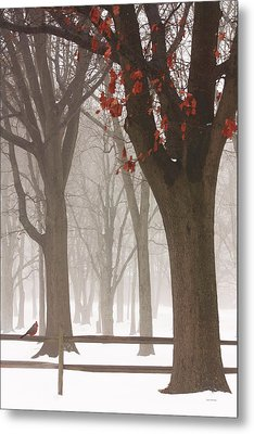 Winter In The Woods Metal Print by Tom York Images
