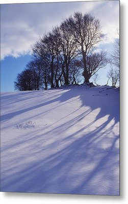 Winter Landscape Metal Print by The Irish Image Collection