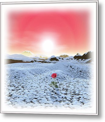 Winter Rose Metal Print
