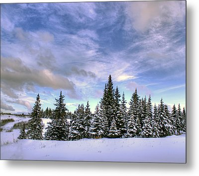 Metal Print featuring the photograph Winter Sky by Michele Cornelius