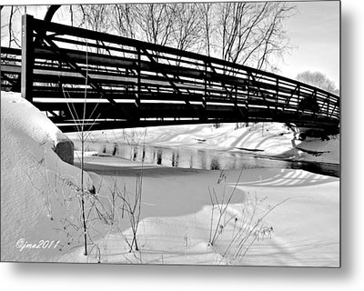 Winter Splendor In B And W Metal Print by Janice Adomeit