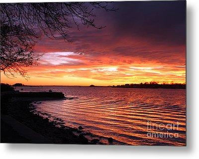Winter Sunset Metal Print by Butch Lombardi
