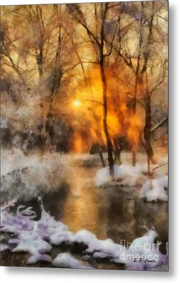 Winter Sunset Metal Print by Elizabeth Coats
