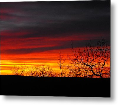 Winter Sunset Metal Print by Rebecca Cearley