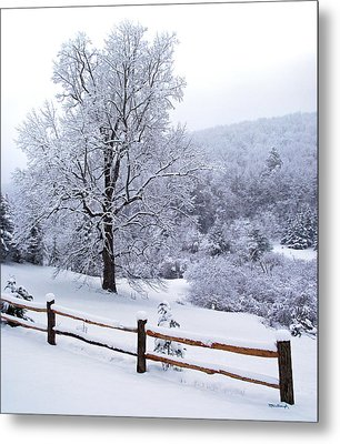 Winter Tree And Fence In The Valley Metal Print