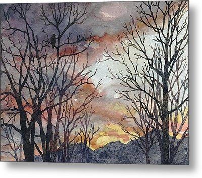 Winter Watch Metal Print by Anne Gifford