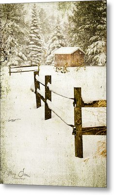 Metal Print featuring the digital art Winter's Beauty by Mary Timman