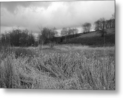 Metal Print featuring the photograph Winters Breeze by Kathleen Grace
