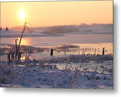 Metal Print featuring the photograph Winter's Morning by Elizabeth Winter