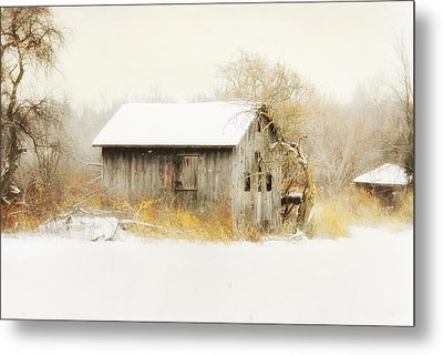 Metal Print featuring the photograph Winters Rage by Mary Timman