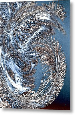 Wintry Pine Needles Metal Print by Will Borden