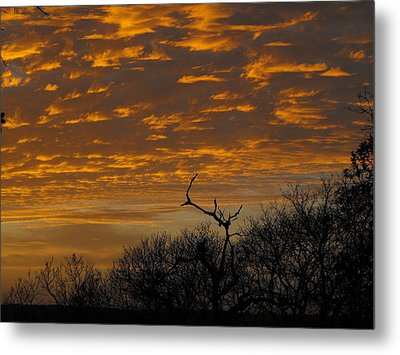 Wispy Sunset Clouds Metal Print by Rebecca Cearley