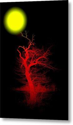 Witchwood Metal Print by Steve K