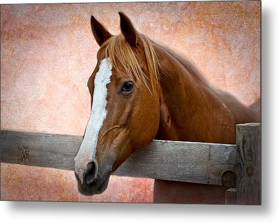 With A Whisper Metal Print by Doug Long