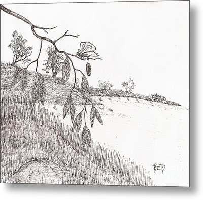 With New Wings... - Sketch Metal Print by Robert Meszaros