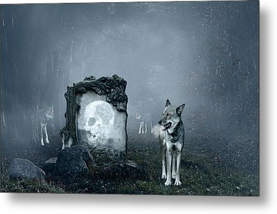 Wolves Guarding An Old Grave Metal Print by Jaroslaw Grudzinski