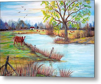 Wonderful Farm Home Metal Print by Janna Columbus
