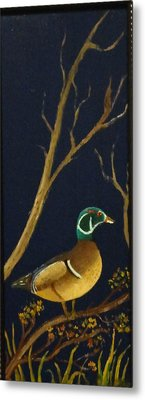Metal Print featuring the painting Wood Duck by Al  Johannessen