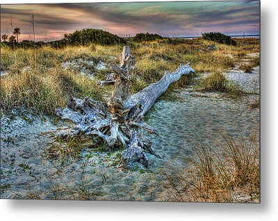 Metal Print featuring the photograph Wood by Joetta West