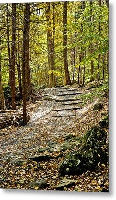 Wooded Stairway Metal Print