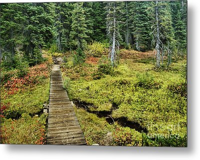 Wooden Foot Bridge Over Stream Metal Print by Ned Frisk
