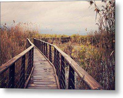 Wooden Path On The Lake Metal Print by Copyright Anna Nemoy(Xaomena)