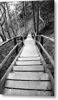 Wooden Stairs Metal Print by Falko Follert