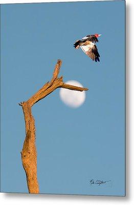 Woody Flying By The Moon Metal Print
