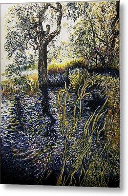 Wooli Lake Hiawatha Metal Print by Helen Duley
