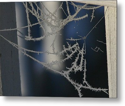 Work Of Spider And Winter Metal Print by Paula Tohline Calhoun