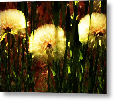 Worlds Within Worlds Metal Print by Lenore Senior