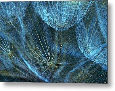 Woven Webs Metal Print