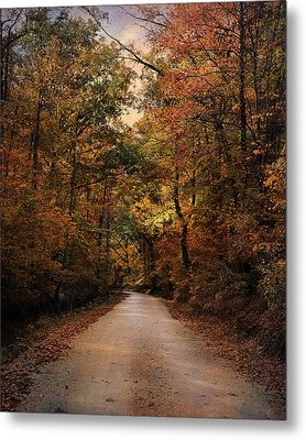 Wrapped In Autumn Metal Print by Jai Johnson