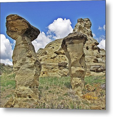 Writing On Stone 1 Metal Print by Margaret Buchanan