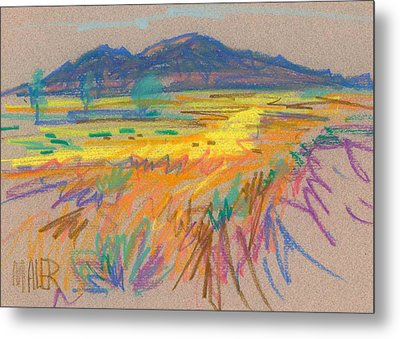 Wyoming Sketch Metal Print by Donald Maier