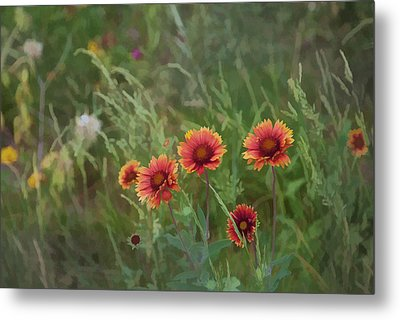 Metal Print featuring the photograph Yawn...more Flowers by John Crothers