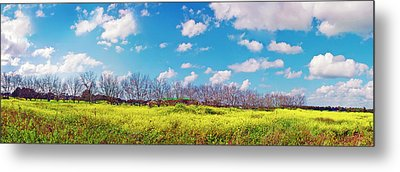 Yellow Blue And Trees Metal Print