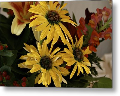 Yellow Daisies Metal Print by Richard Gregurich