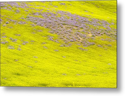 Yellow Fields Metal Print by Guido Montanes Castillo