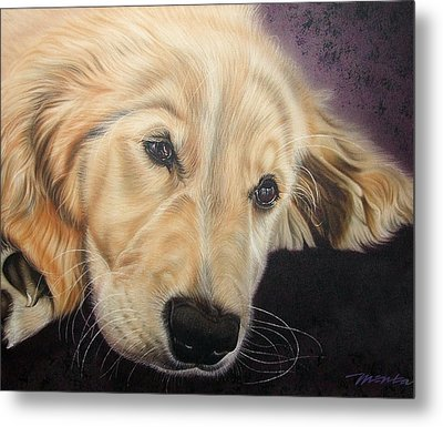 Metal Print featuring the painting Yellow Lab by Dan Menta