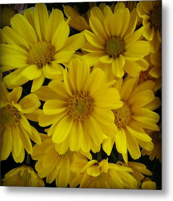 Yellow Love Metal Print by Chasity Johnson