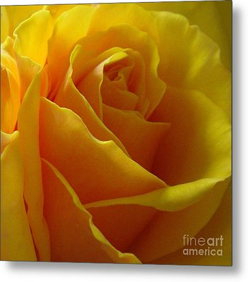 Metal Print featuring the photograph Yellow Rose Of Texas by Sandra Phryce-Jones