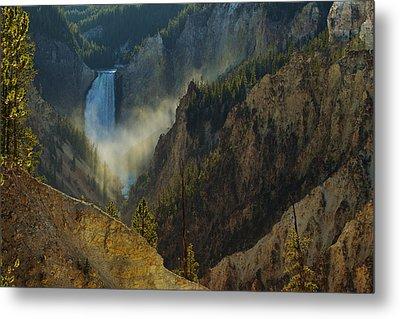 Yellowstone Lower Falls Metal Print by Johan Elzenga