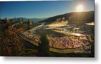 Yellowstone National Park - Minerva Terrace - 05 Metal Print by Gregory Dyer