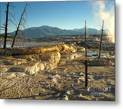 Yellowstone National Park - Minerva Terrace - 10 Metal Print by Gregory Dyer