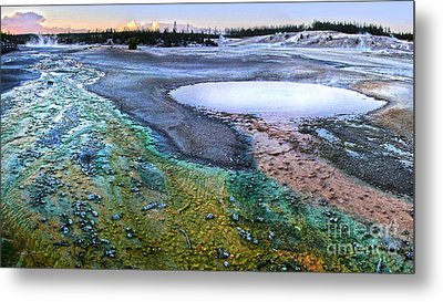 Yellowstone Norris Geyser Basin At Sunset - 04 Metal Print by Gregory Dyer